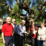 Gut gelaunt: Die Mitglieder des Heimatvereins veranstalteten die Pflanzenbörse