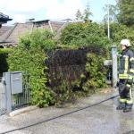 Bönningstedt: Heckenbrand in der Ahornstraße