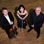 Das Hamburg-Trio