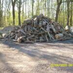 Bönningstedt: Feuerholz zu verkaufen